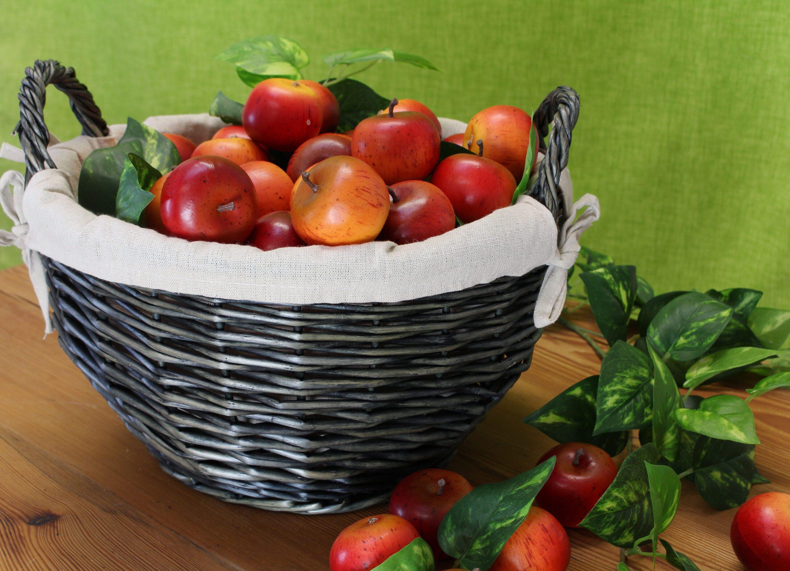 Tag des deutschen Apfels – Startschuss für Gartenarbeit