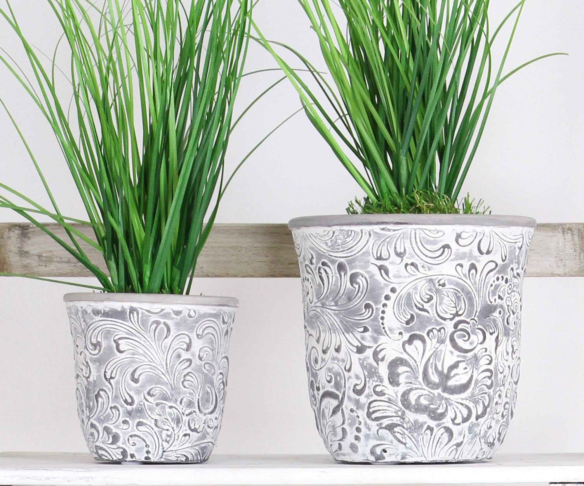 Übertöpfe für die Pflanzenüberwinterung im Wohnzimmer