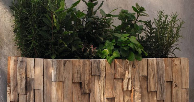 Das kleine Hochbeet-Einmaleins: Gärtnern auf Griffhöhe