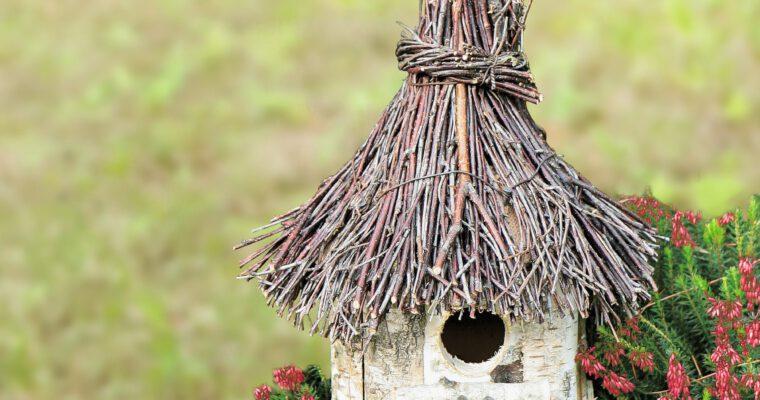 Vogelhäuschen im Garten: Was muss beachtet werden?