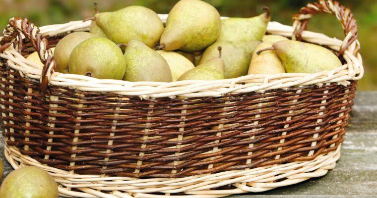 Erntetipps für Obst und Gemüse aus dem Garten