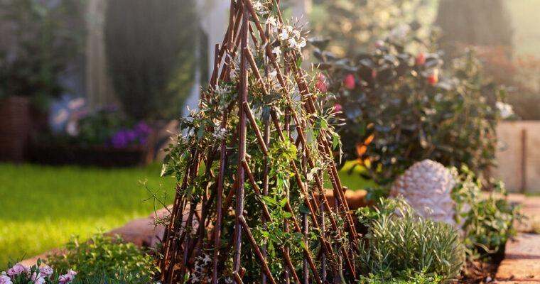 Rankhilfen aus Weide – Gartendeko im natürlichen Look
